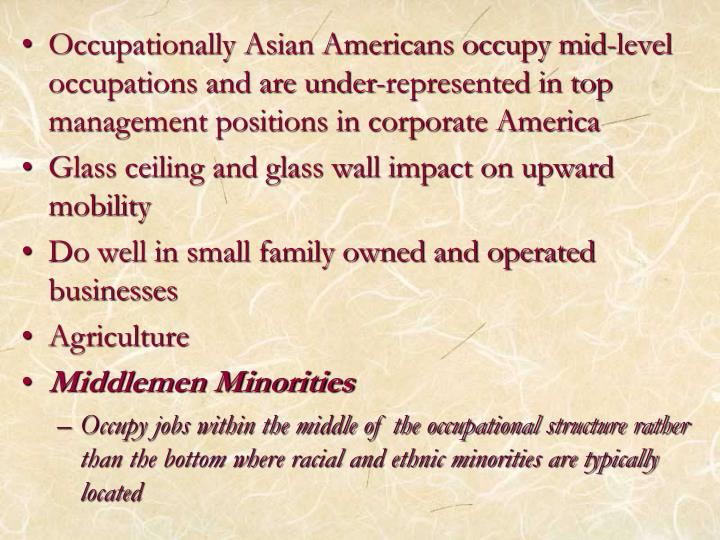 Occupationally Asian Americans occupy mid-level occupations and are under-represented in top management positions in corporate America