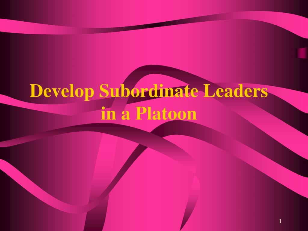 Develop Subordinate Leaders in a Platoon