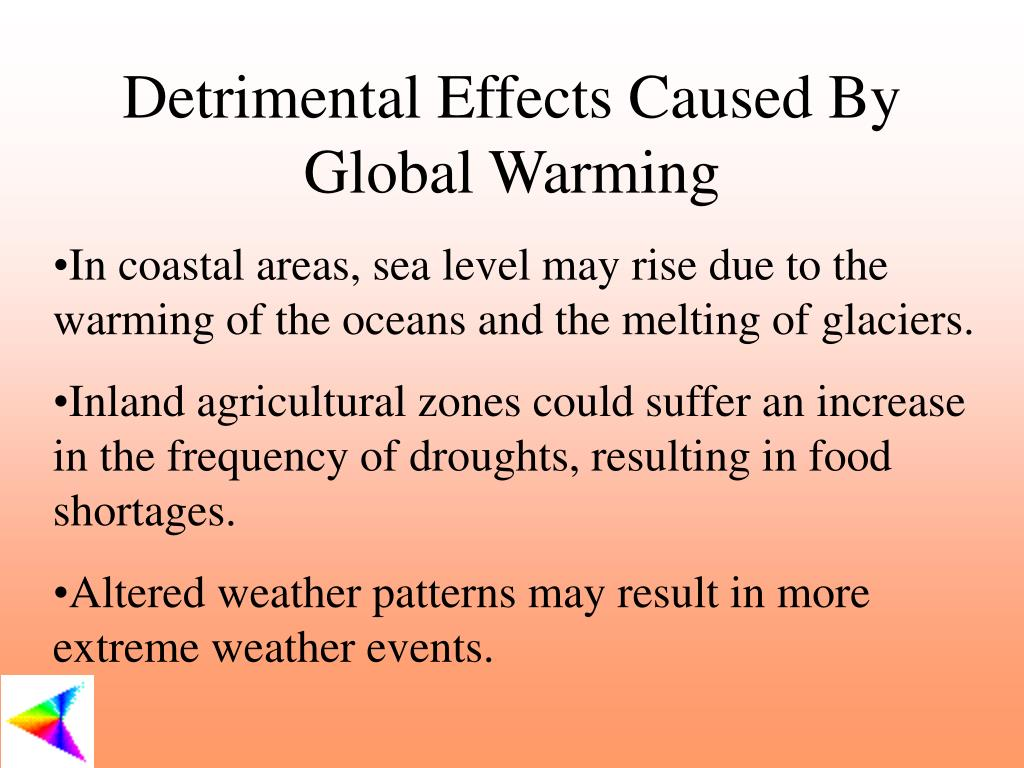 Detrimental Effects Caused By Global Warming