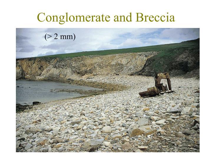 Conglomerate and Breccia