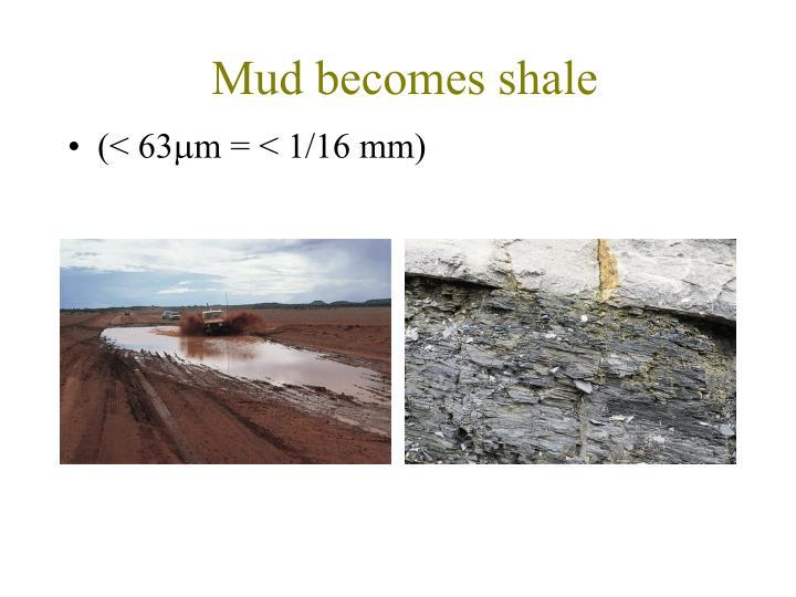 Mud becomes shale