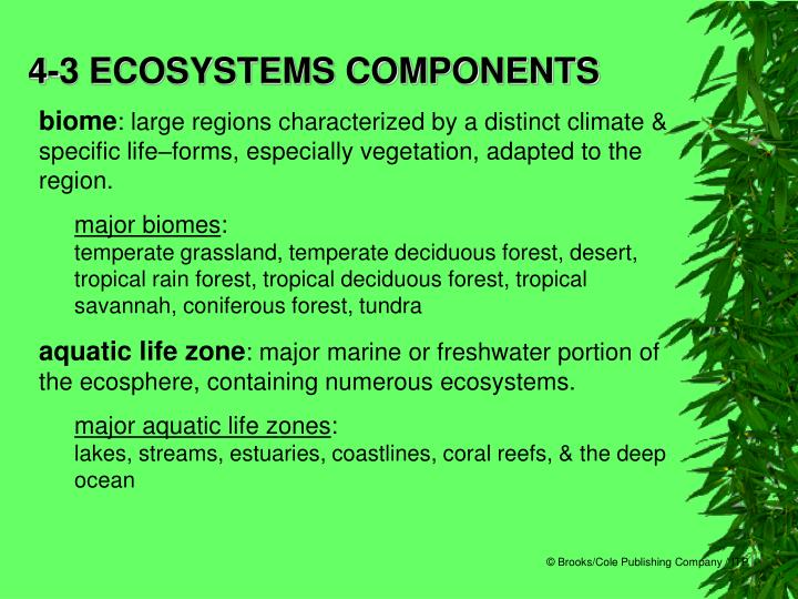 4-3 ECOSYSTEMS COMPONENTS