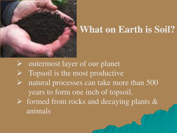 What on Earth is Soil?