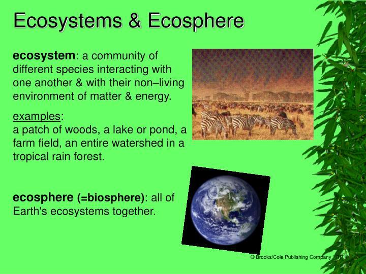 Ecosystems & Ecosphere