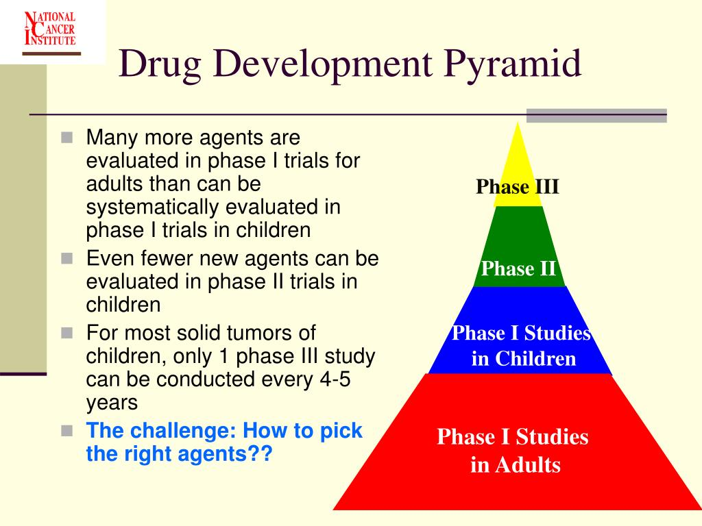 Drug Development Pyramid