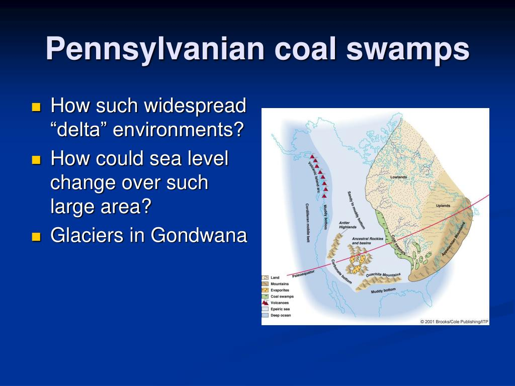 Pennsylvanian coal swamps