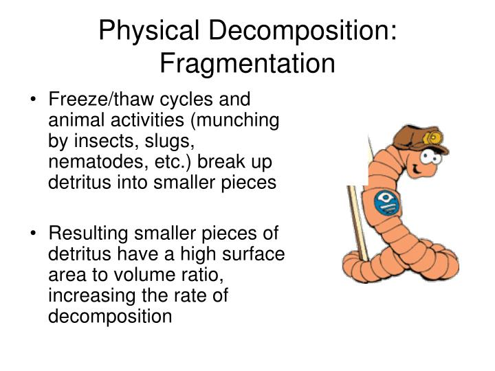 Physical Decomposition: Fragmentation