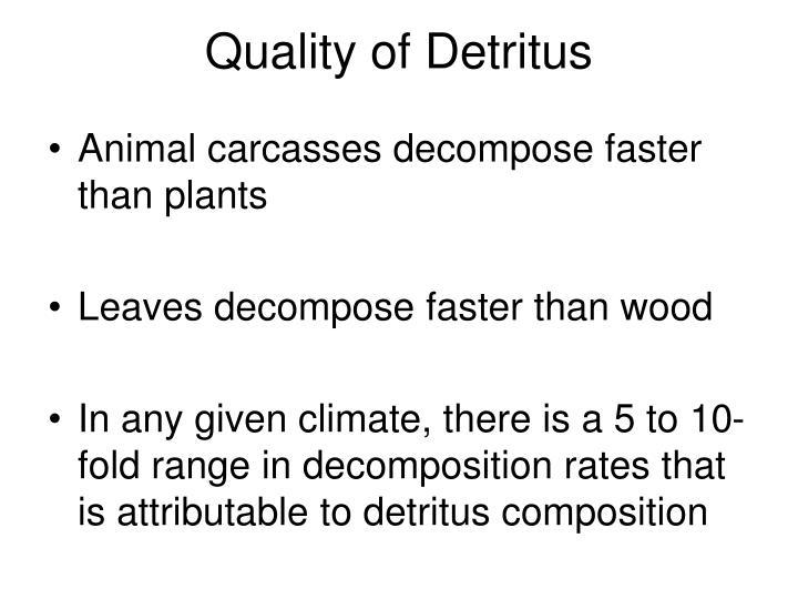 Quality of Detritus
