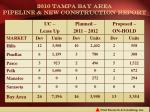 2010 tampa bay area pipeline new construction report