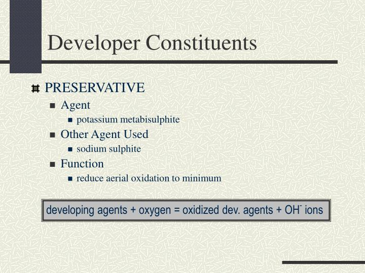 Developer Constituents