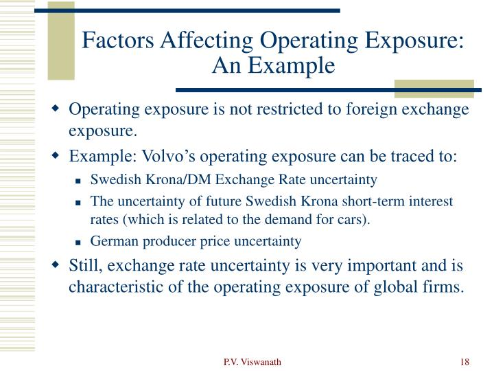 Factors Affecting Operating Exposure: An Example