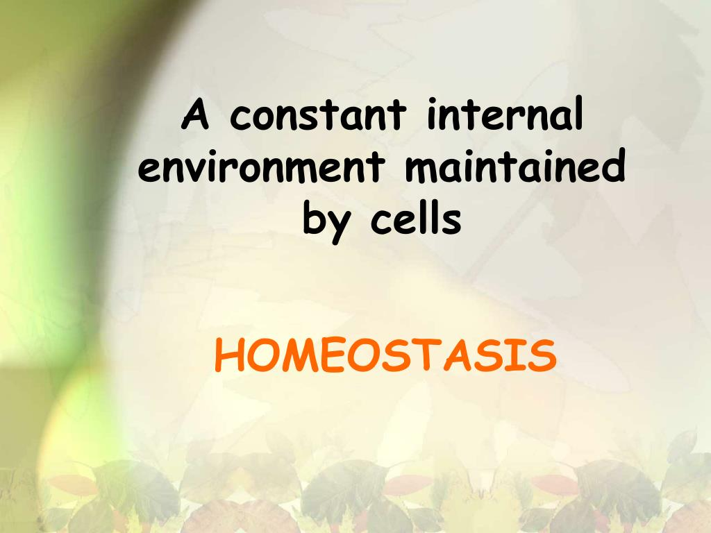 A constant internal environment maintained by cells