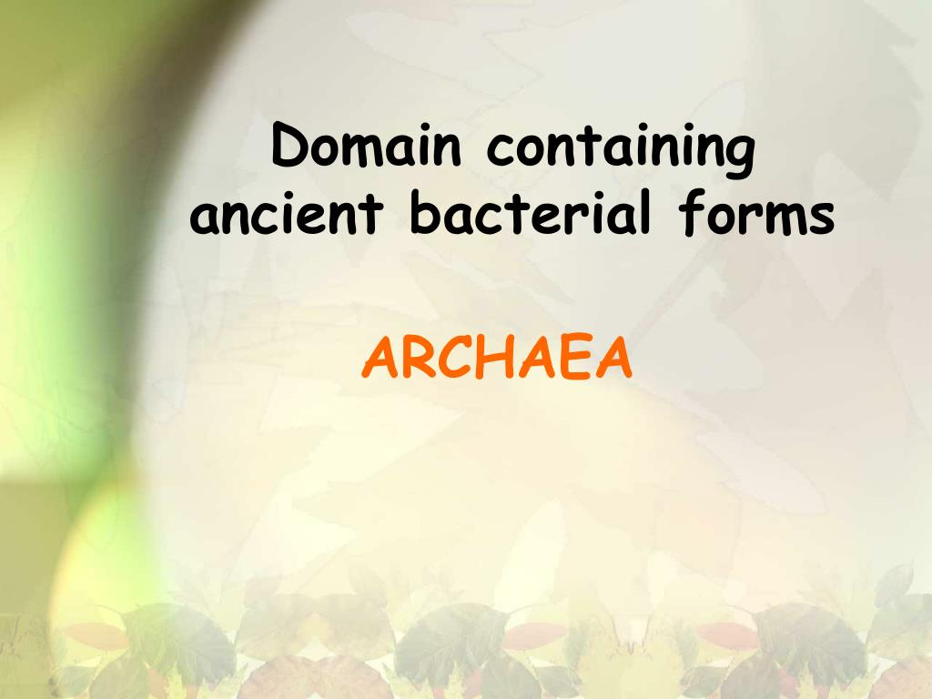 Domain containing ancient bacterial forms