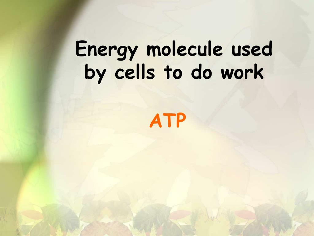Energy molecule used by cells to do work