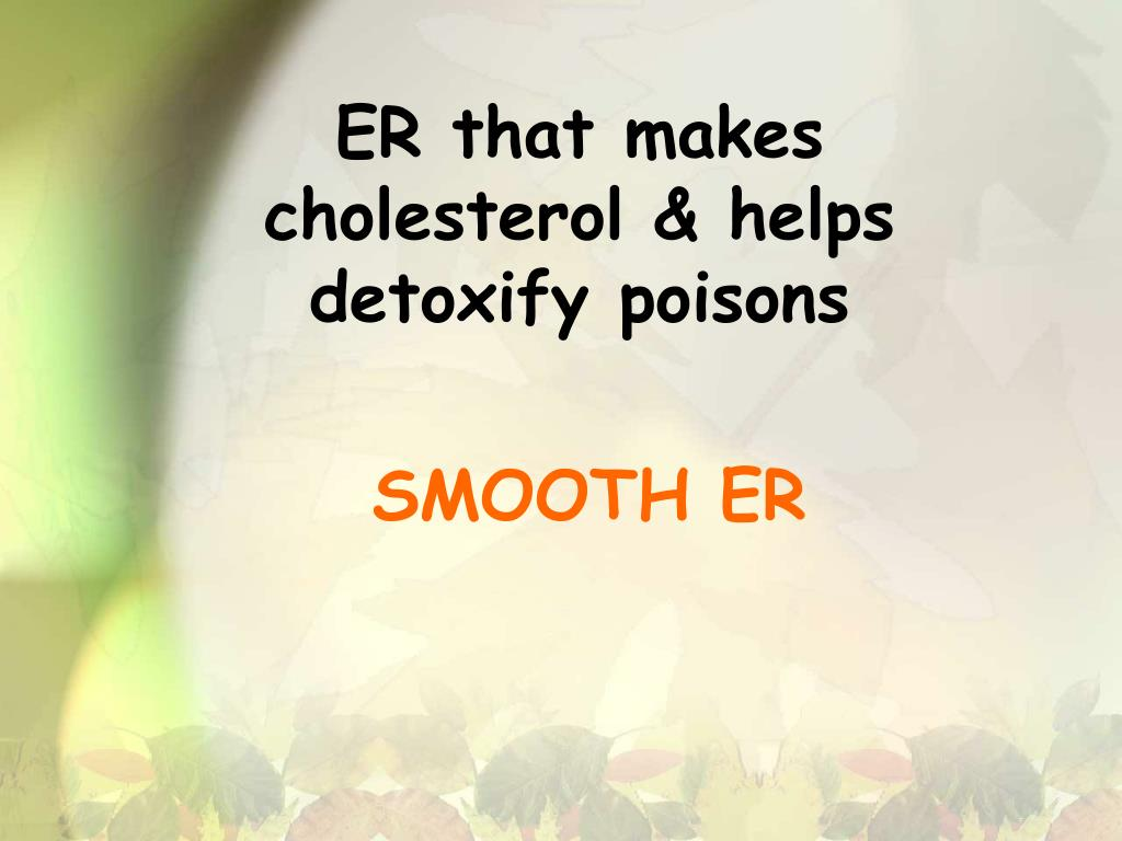 ER that makes cholesterol & helps detoxify poisons