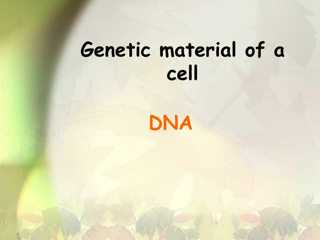 Genetic material of a cell