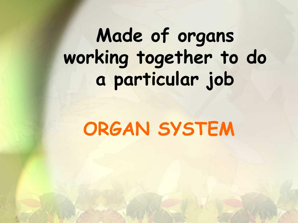 Made of organs working together to do a particular job