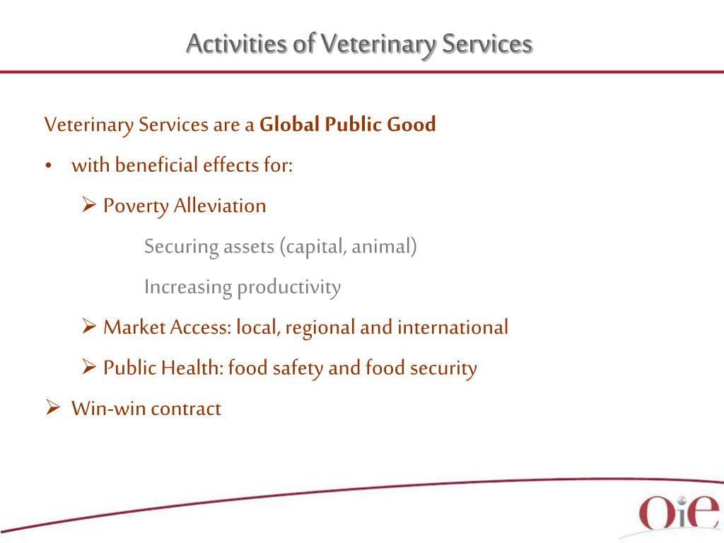 Activities of Veterinary Services