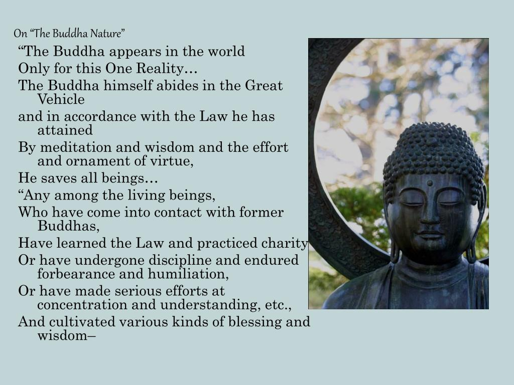 "On ""The Buddha Nature"""