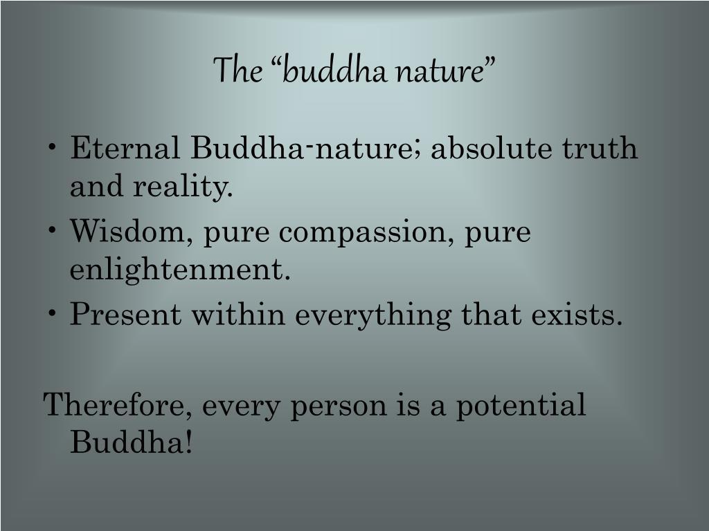 """The """"buddha nature"""""""