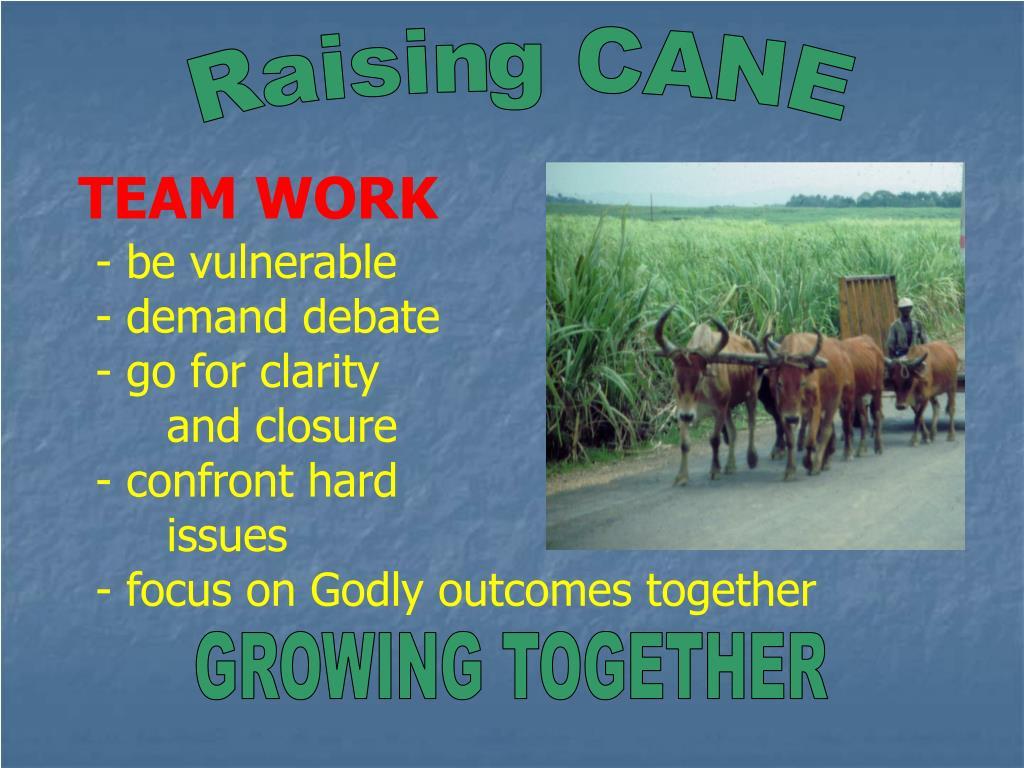 Raising CANE