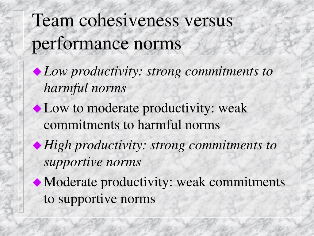 Team cohesiveness versus performance norms