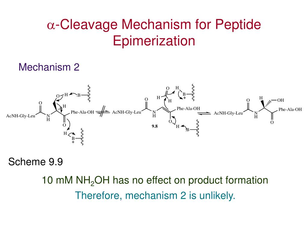 -Cleavage Mechanism for Peptide Epimerization