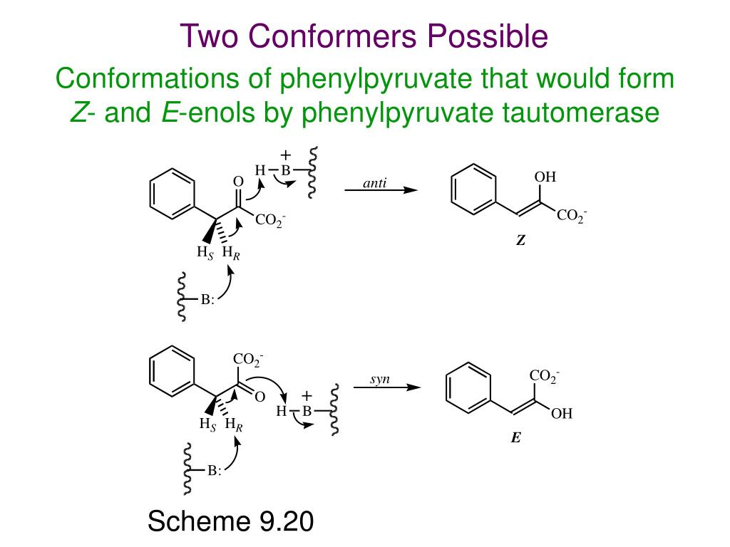 Two Conformers Possible