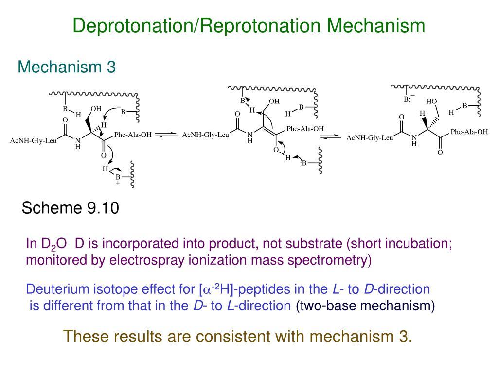 Deprotonation/Reprotonation Mechanism