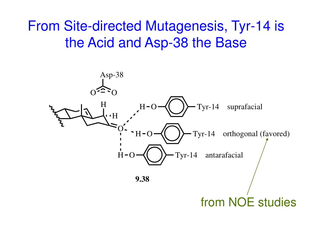 From Site-directed Mutagenesis, Tyr-14 is the Acid and Asp-38 the Base