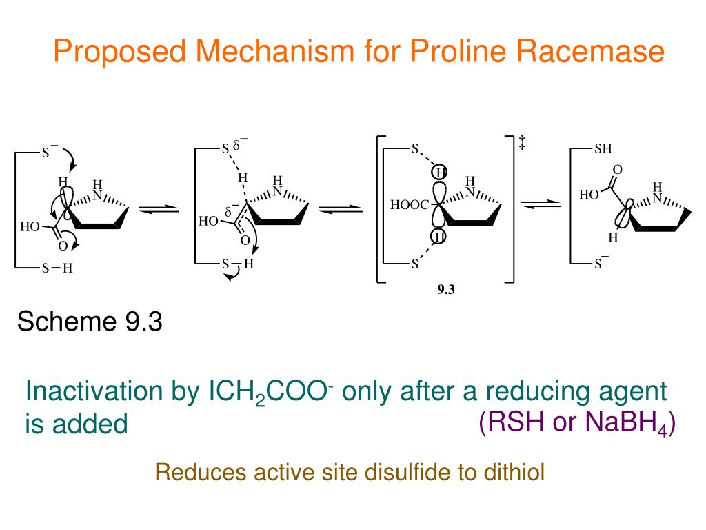 Proposed Mechanism for Proline Racemase
