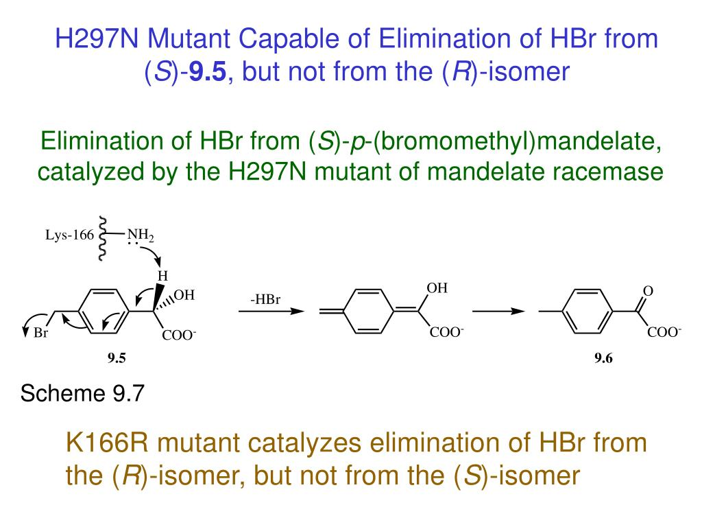 H297N Mutant Capable of Elimination of HBr from (
