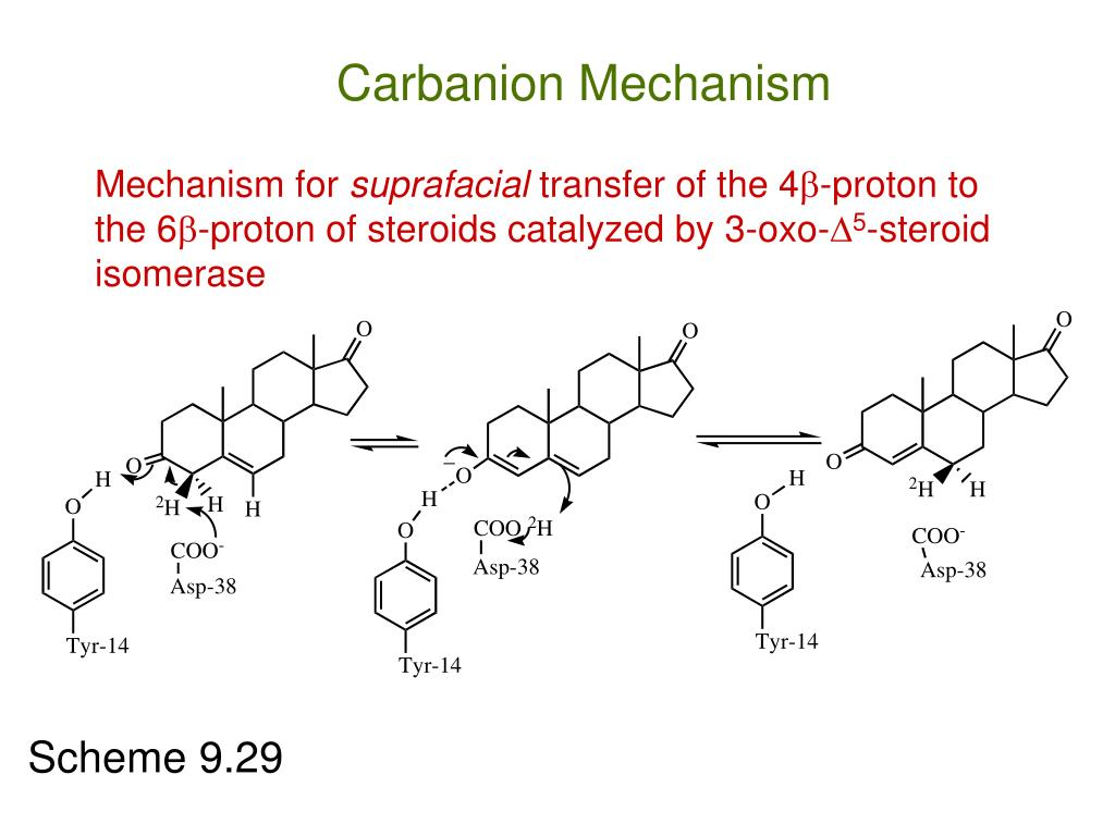 Carbanion Mechanism