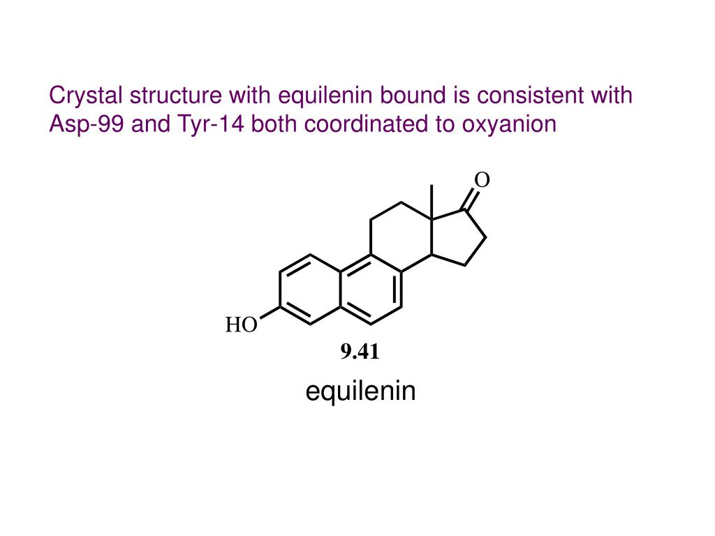 Crystal structure with equilenin bound is consistent with Asp-99 and Tyr-14 both coordinated to oxyanion