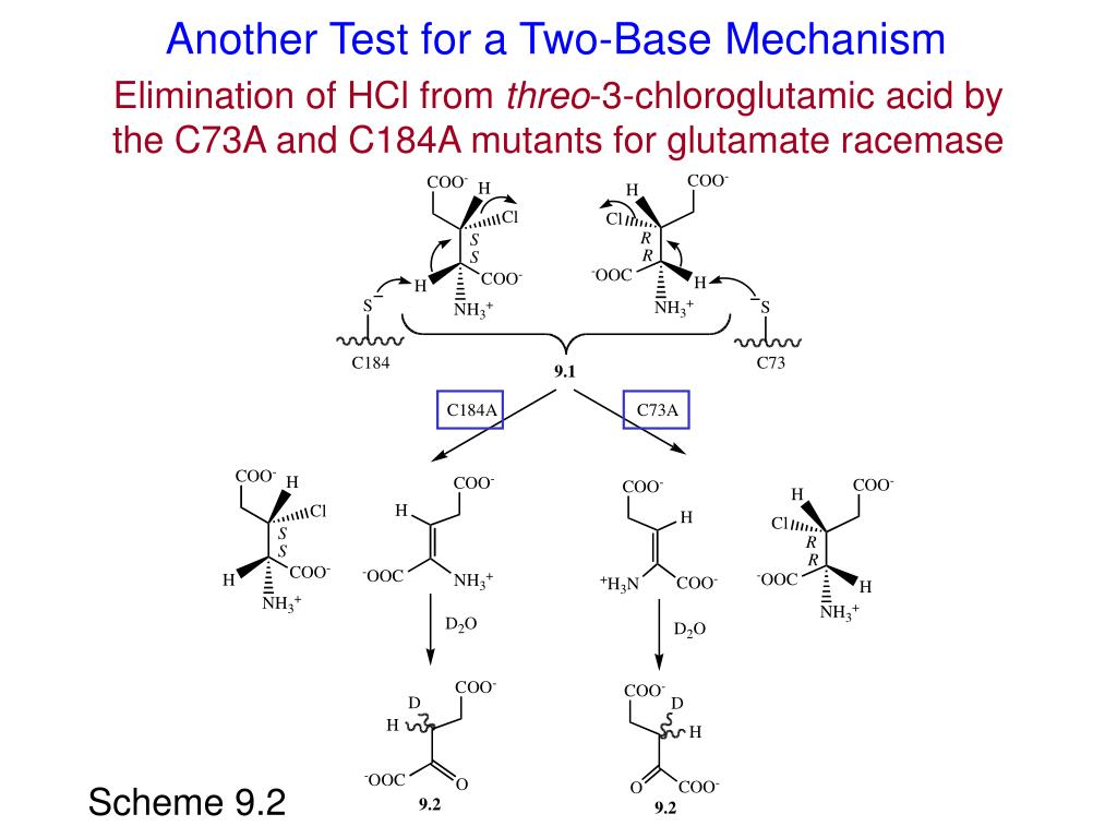 Another Test for a Two-Base Mechanism