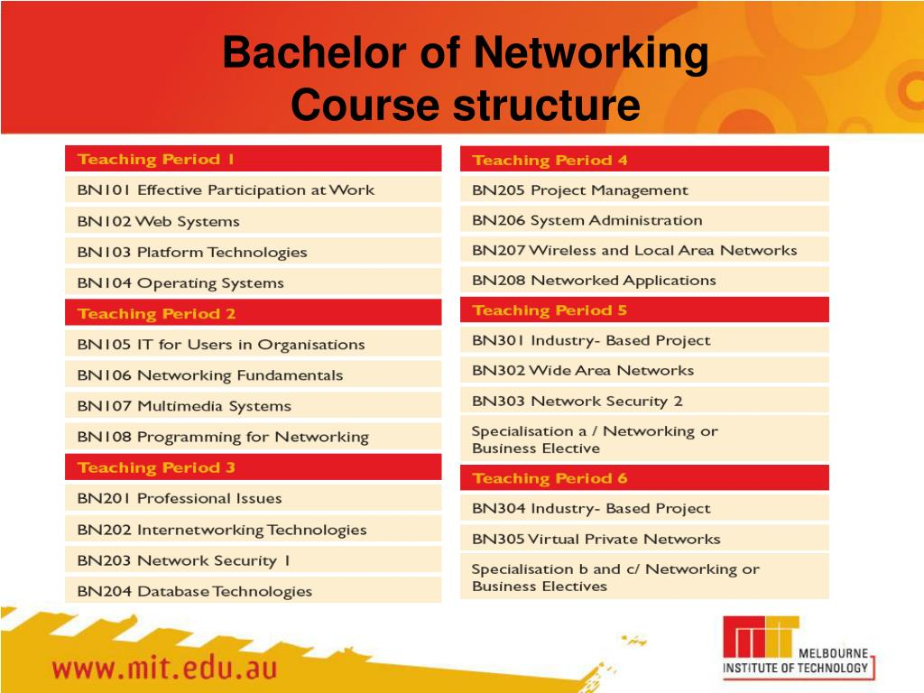 Bachelor of Networking