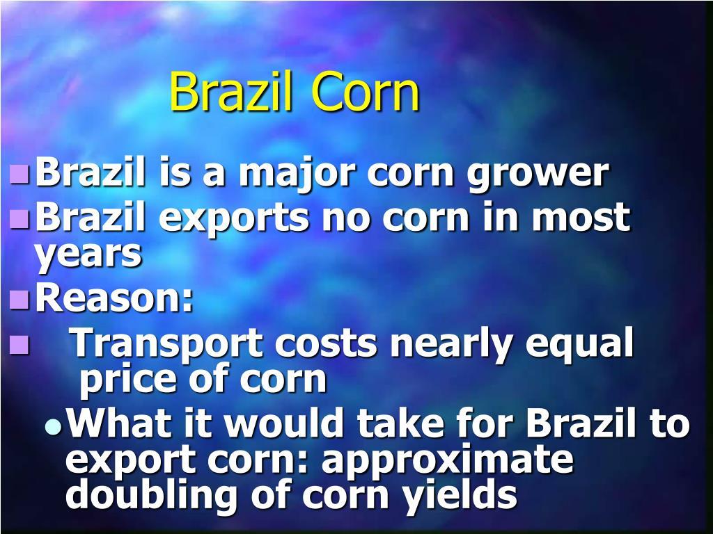 Brazil Corn