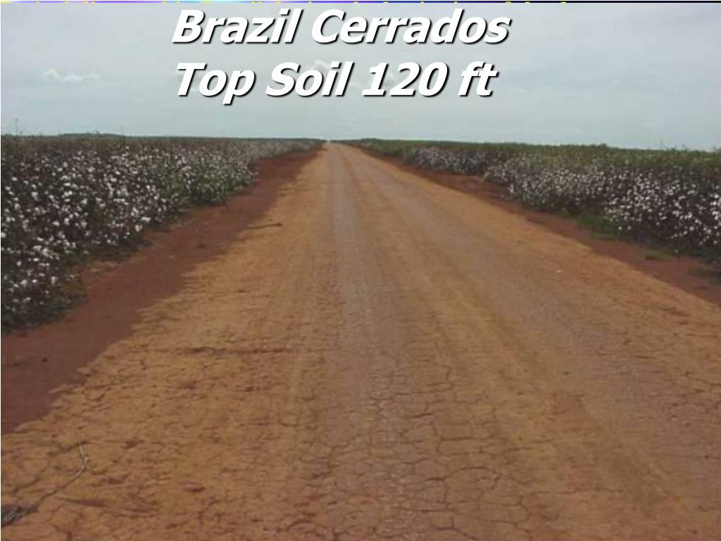 Typical dirt road in Brazil during the beginning of the dry season.