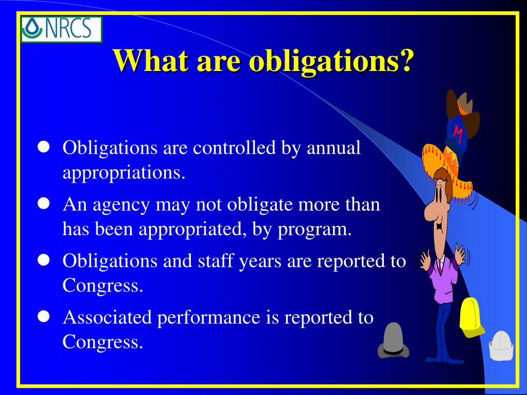 What are obligations?