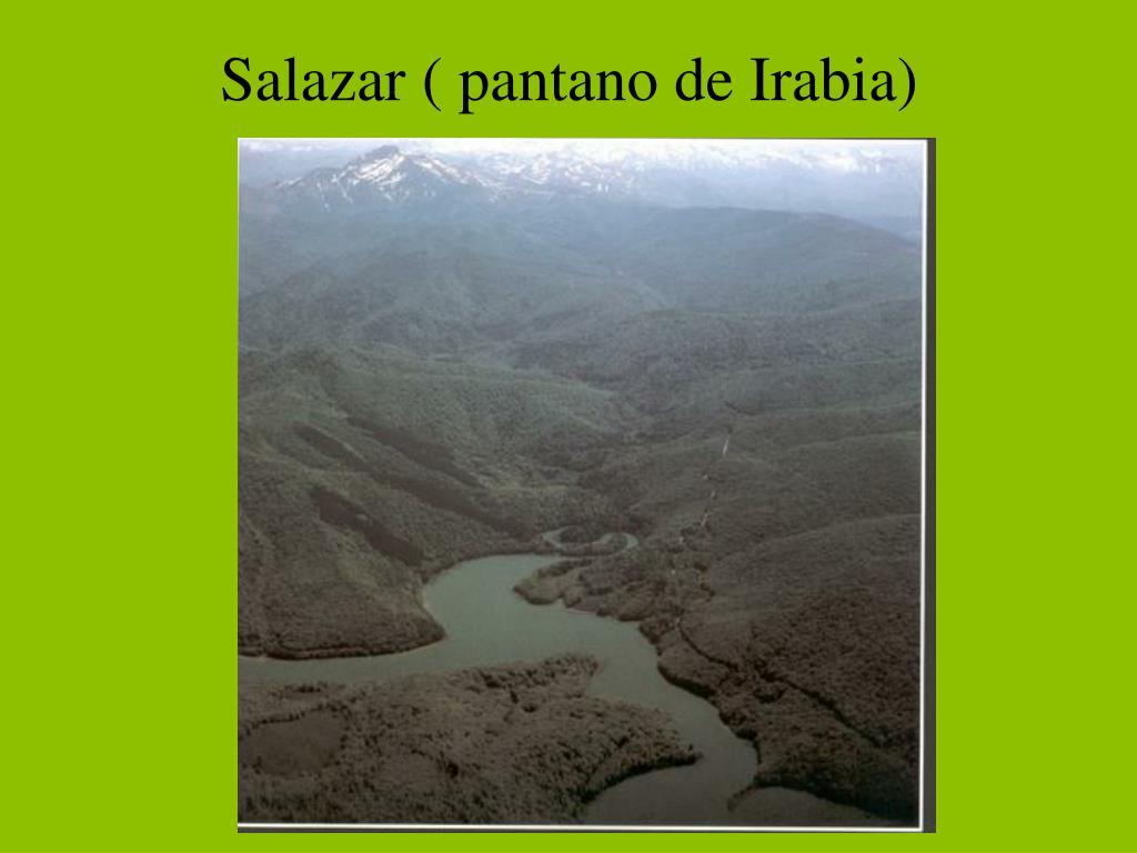 Salazar ( pantano de Irabia)