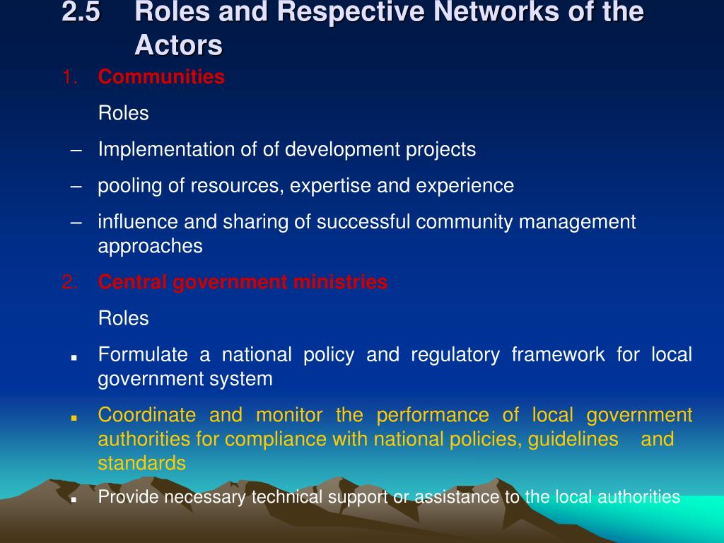 2.5Roles and Respective Networks of the Actors
