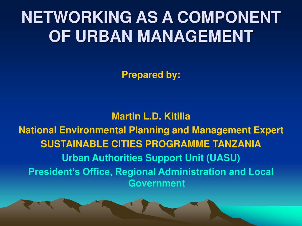 NETWORKING AS A COMPONENT OF URBAN MANAGEMENT