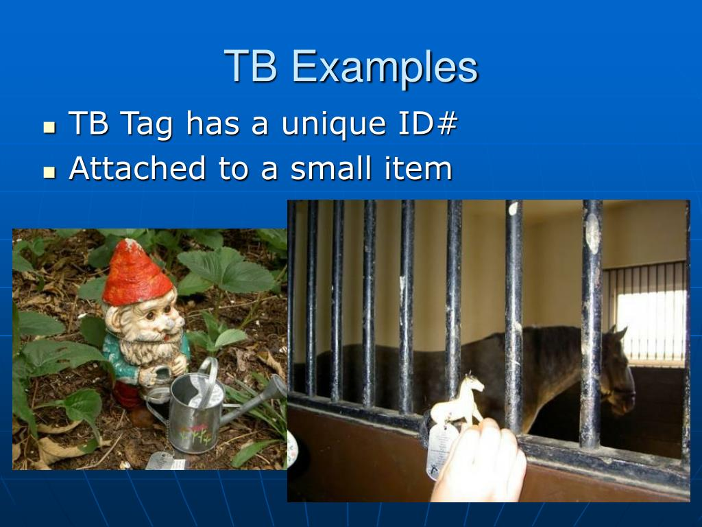TB Examples
