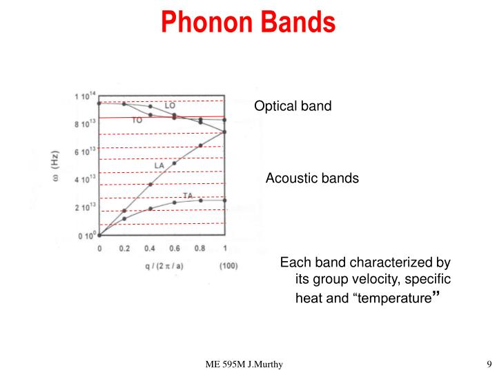 Phonon Bands