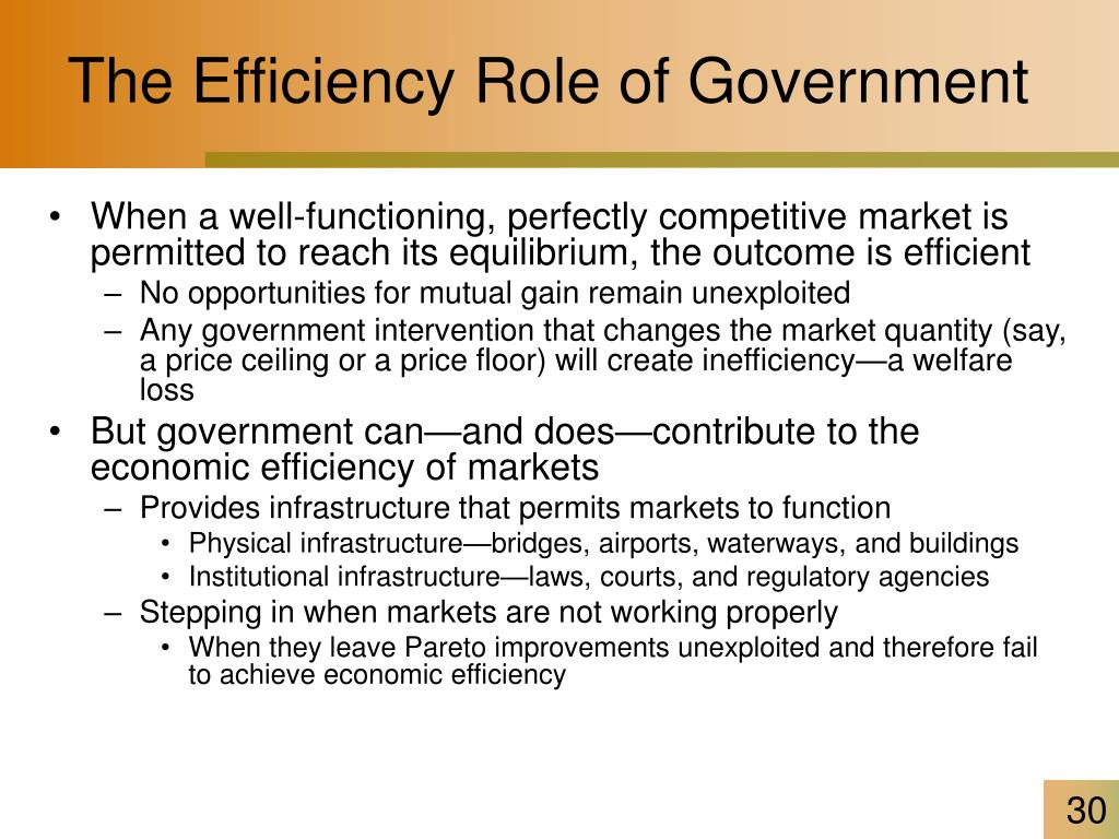 The Efficiency Role of Government
