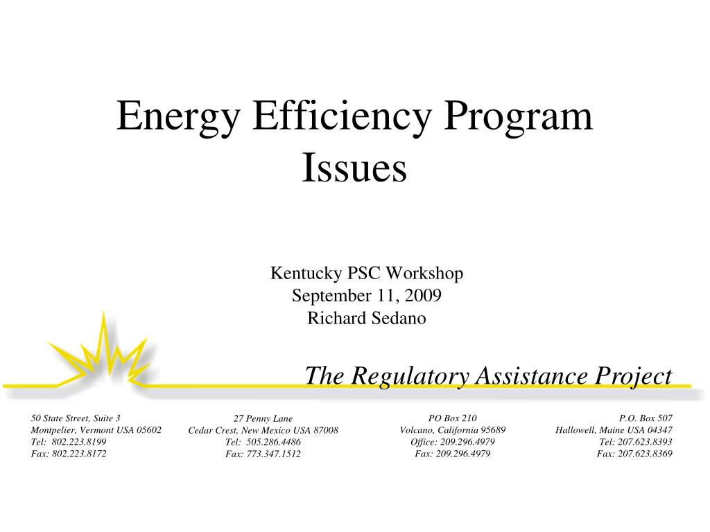 Energy Efficiency Program Issues