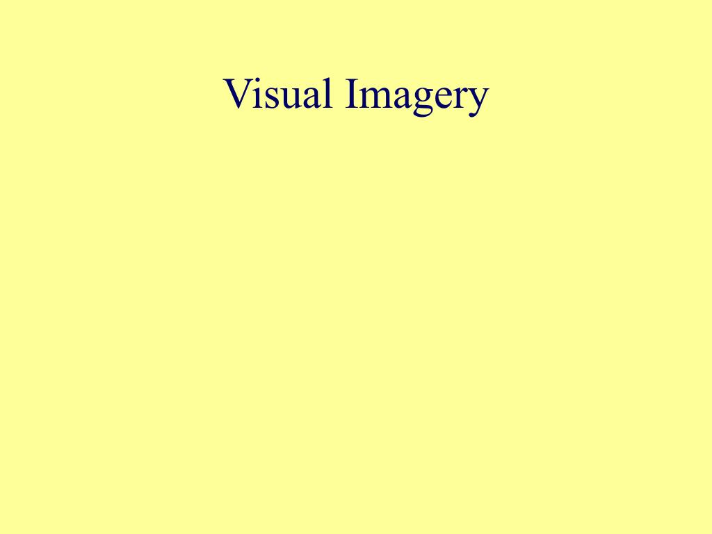 Visual Imagery