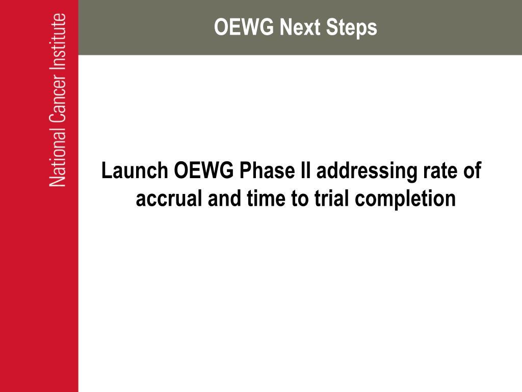 OEWG Next Steps