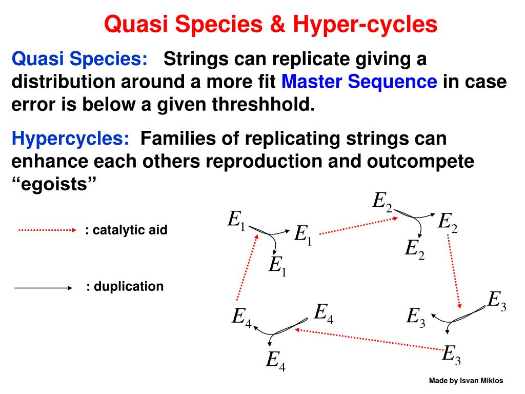 Quasi Species & Hyper-cycles