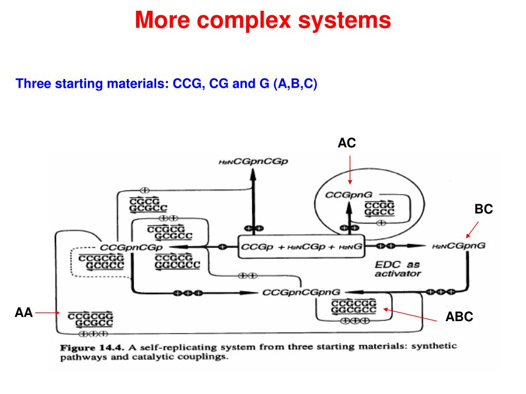 More complex systems